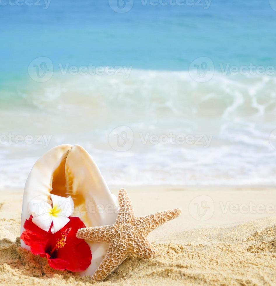 zeeschelp en zeester met tropische bloemen op zandstrand foto
