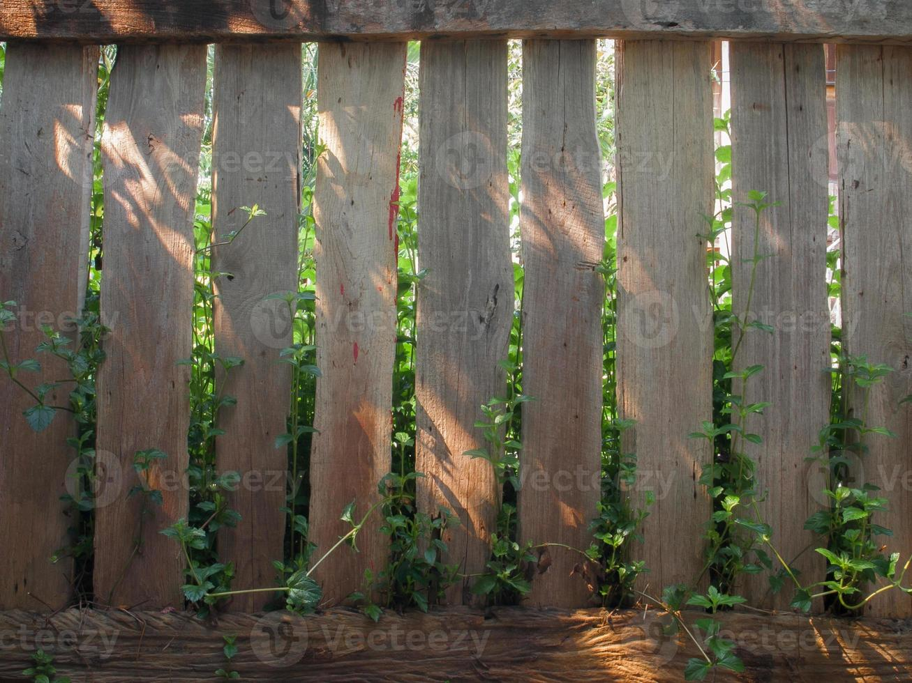 houten hek ontwerp. foto