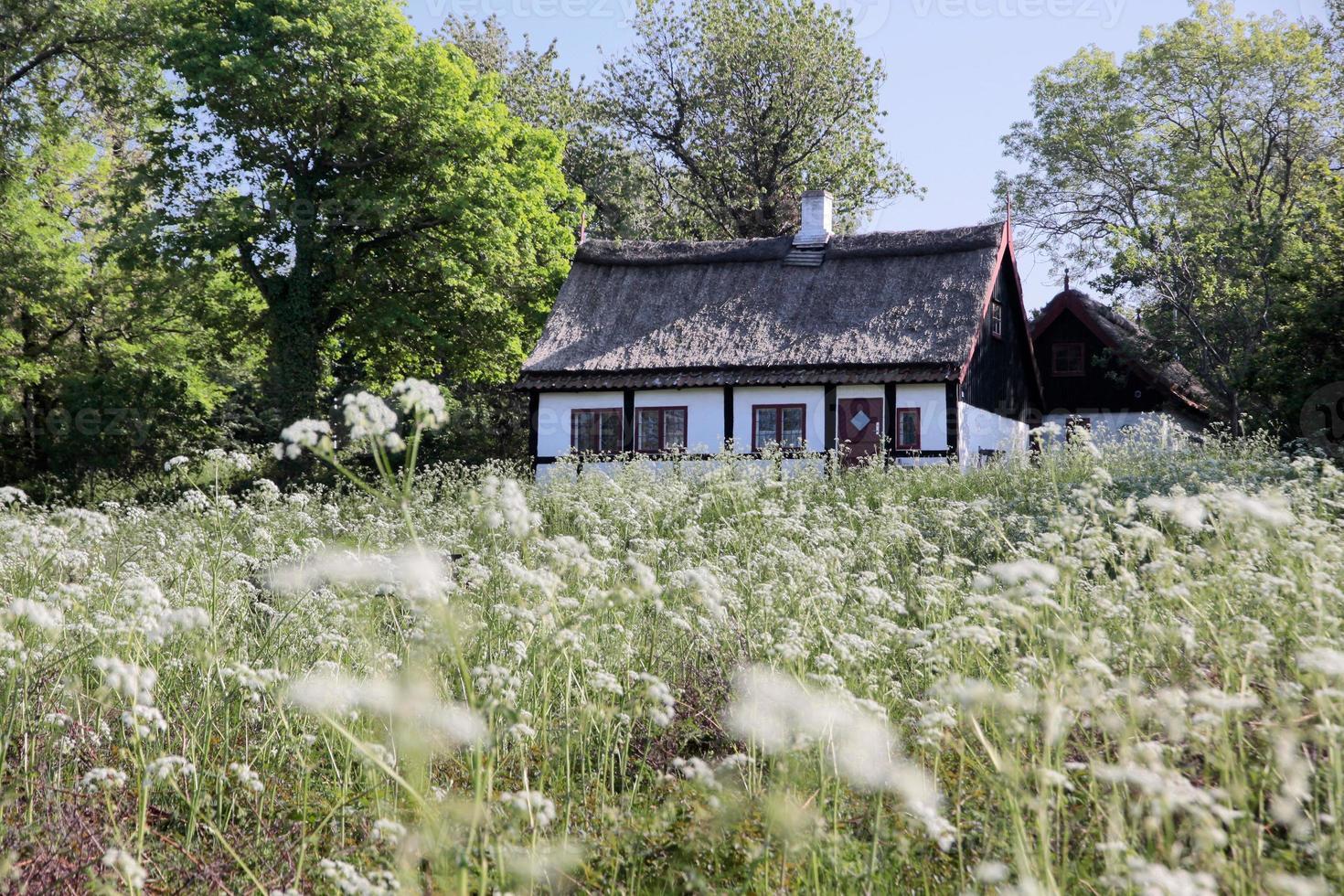 idyllisch huisje met rieten dak foto