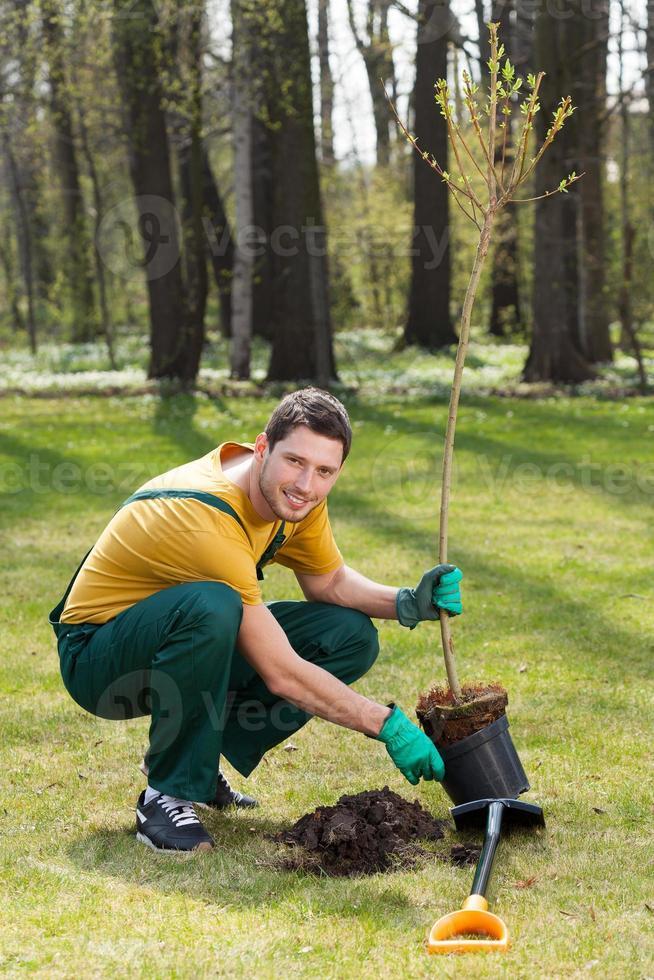 tuinman jonge boom planten foto