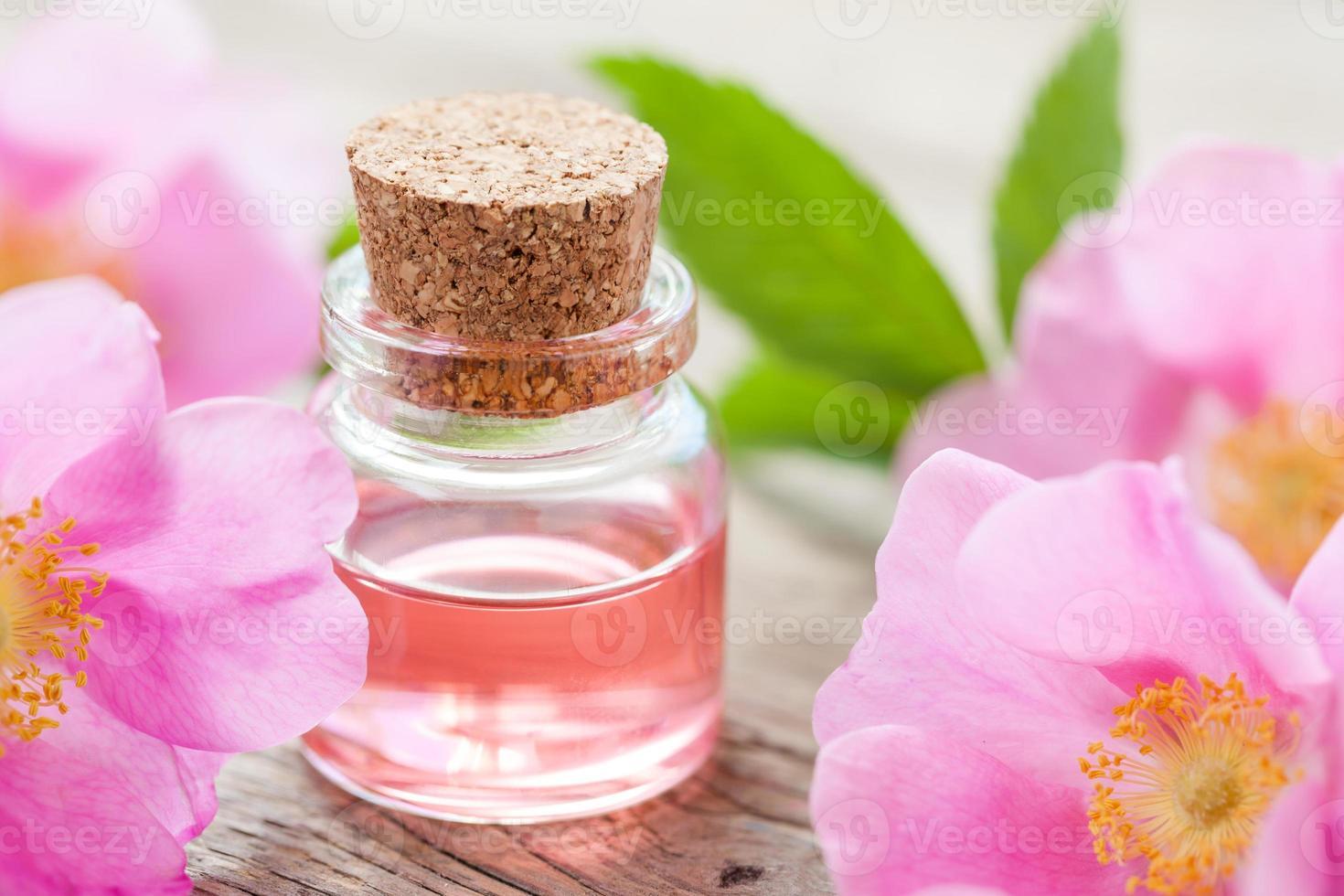 fles etherische rozenolie en roze wilde roos foto