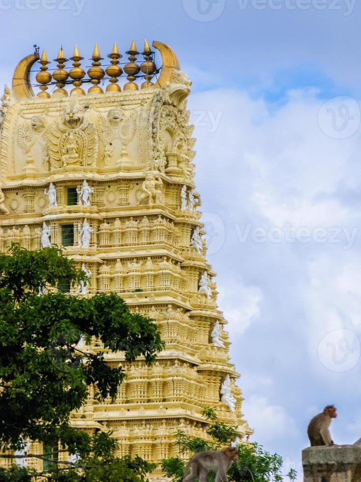 tempel van de godin Chamundi foto