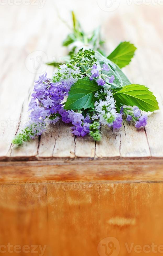 bosje aromatische kruiden: lavendel, salie, munt, tijm foto