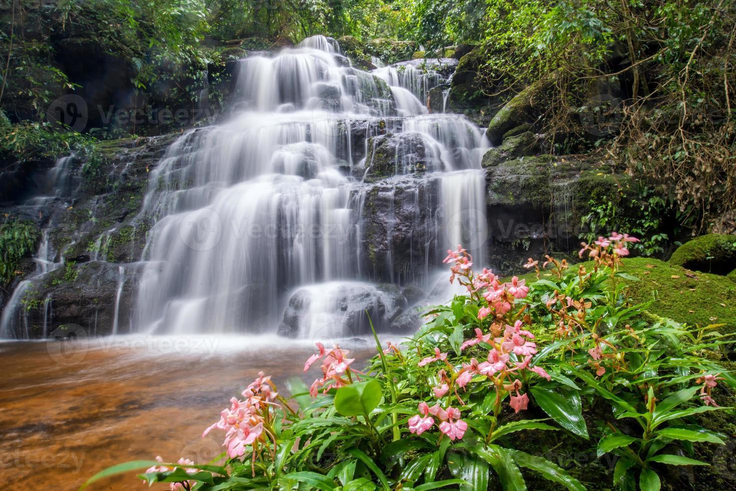 prachtige waterval met roze leeuwebek bloem op de voorgrond foto