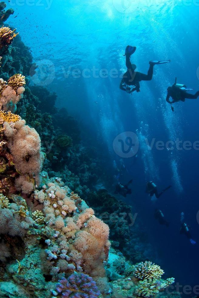 duikgroep die het rif van de oceaan verkent foto