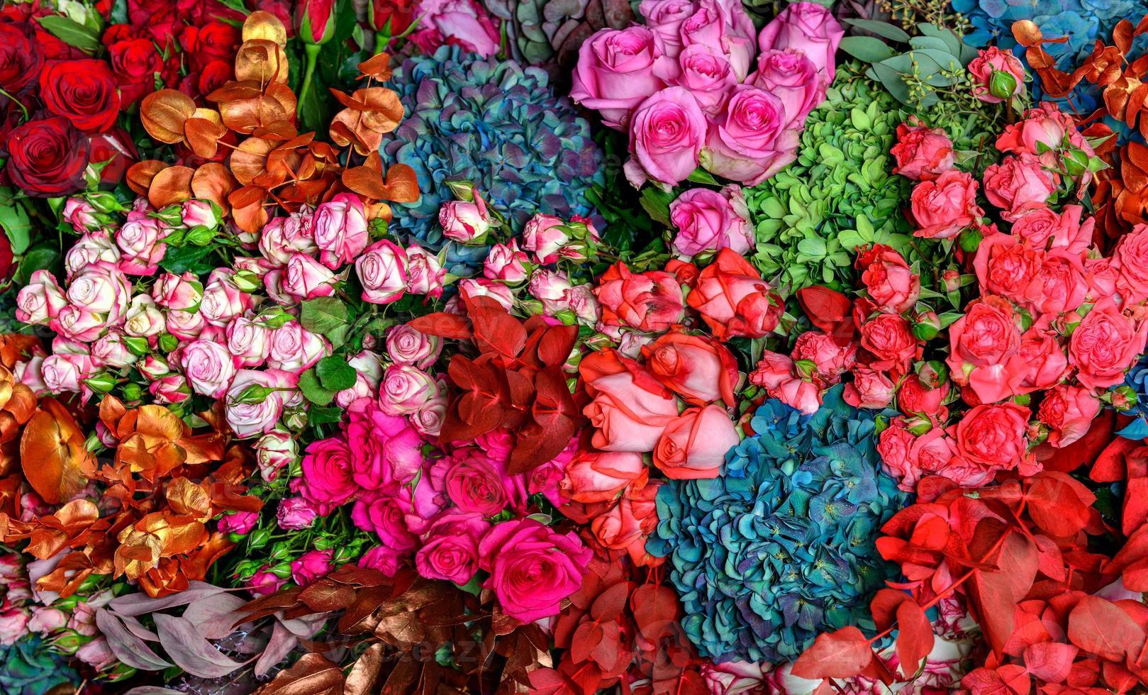 veelkleurige rozen foto