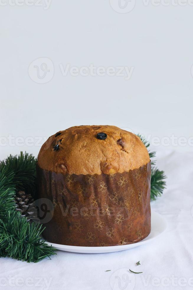 panettone van de Kerstmiscake met exemplaarruimte foto