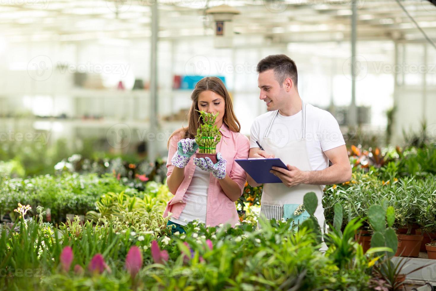 jonge botanici in kas foto