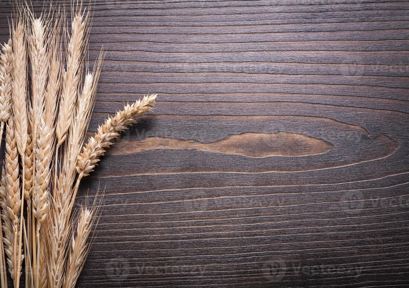 kopieer ruimte afbeelding van tarwe rogge oren op houten achtergrond foto