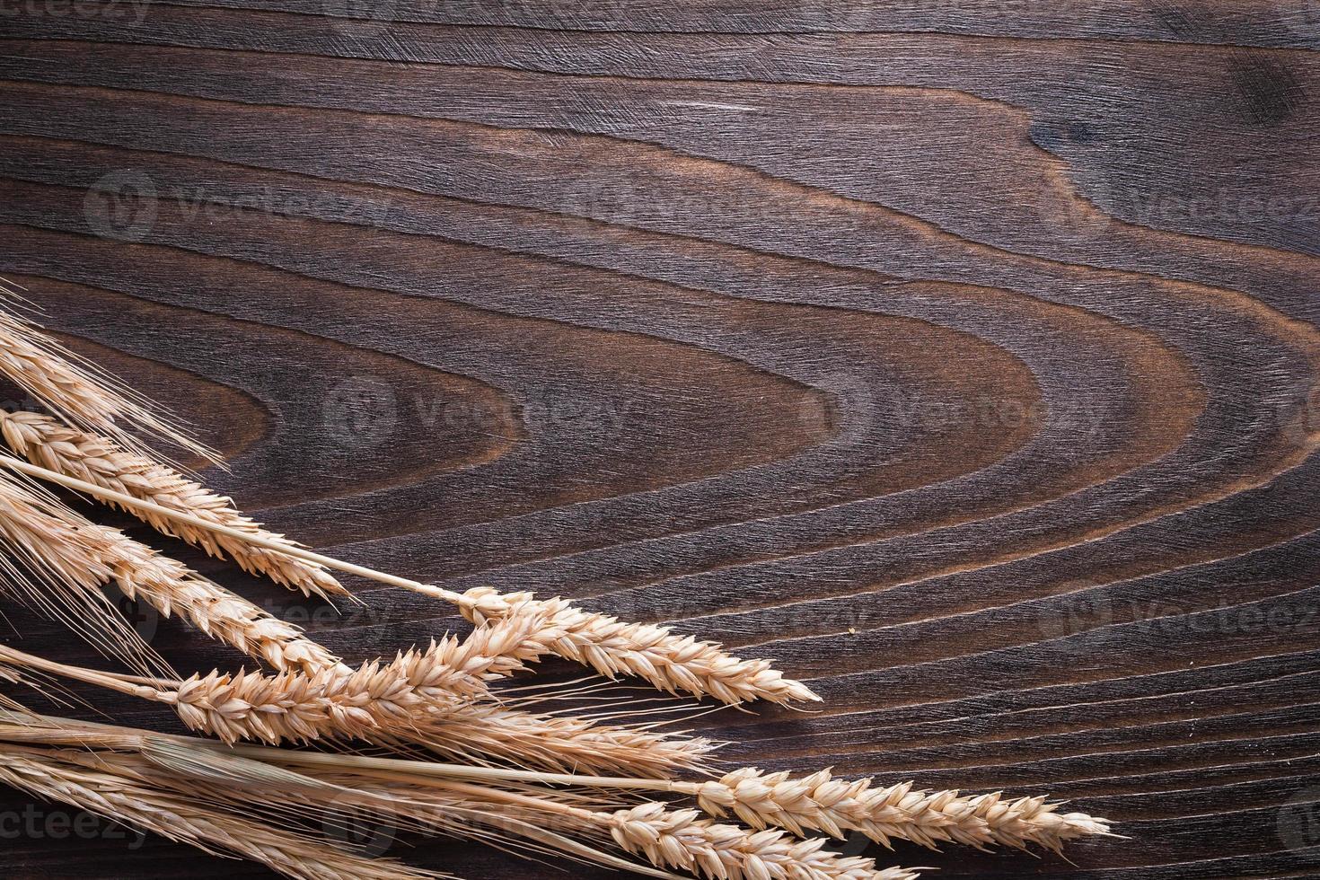 kopieer ruimte afbeelding van tarwe rogge oren op houten vintage foto