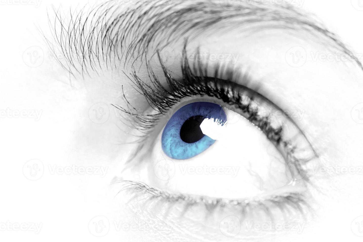 blauw oog close-up foto