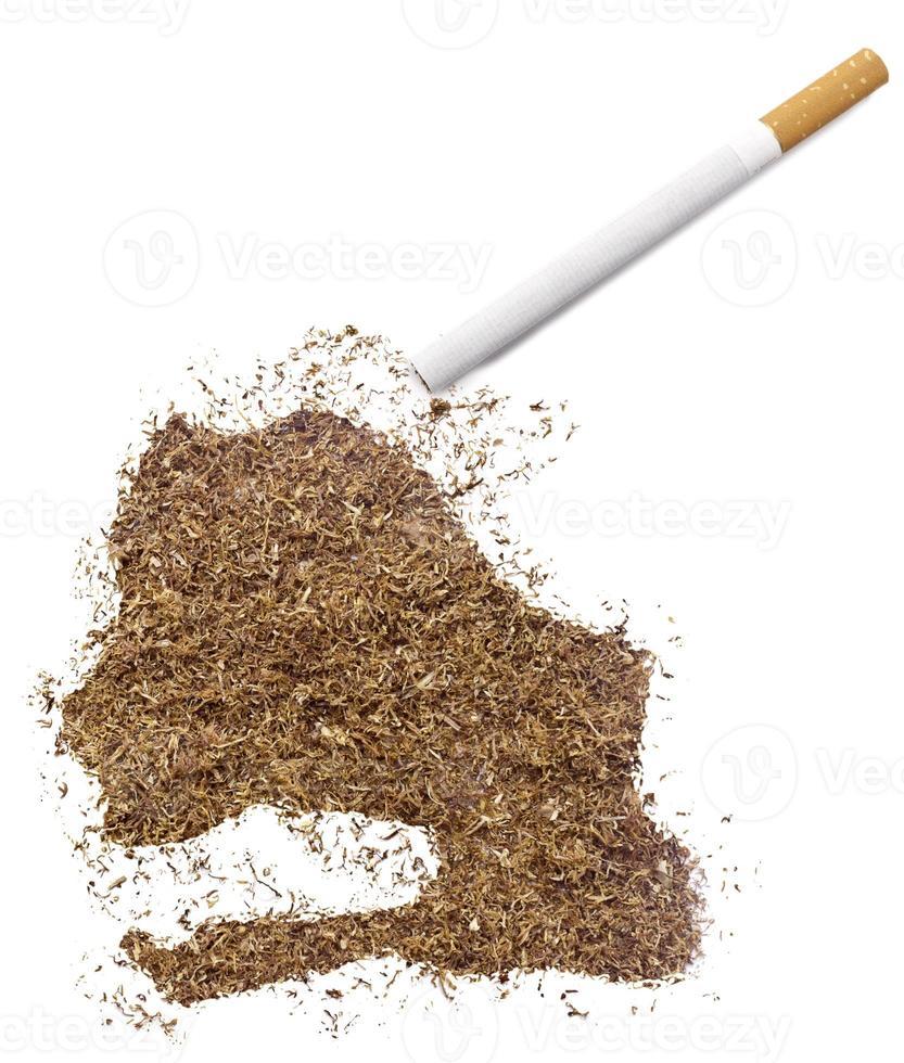 sigaret en tabak in de vorm van senegal (serie) foto