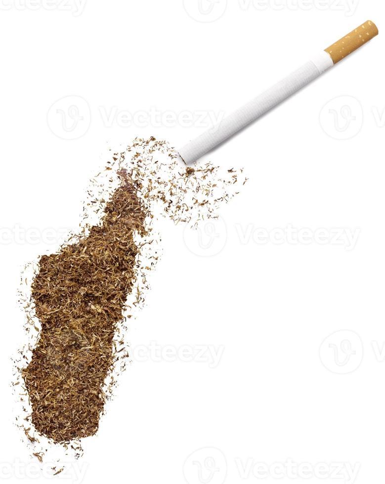 sigaret en tabak in de vorm van Madagaskar (serie) foto