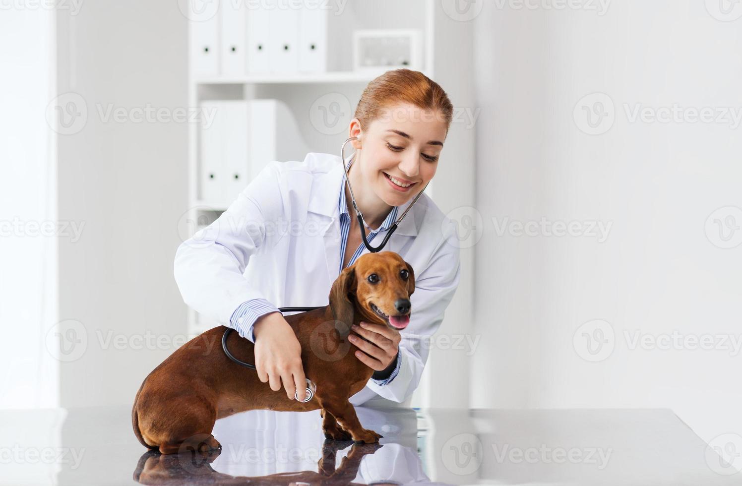 arts met stethoscoop en hond bij dierenartskliniek foto