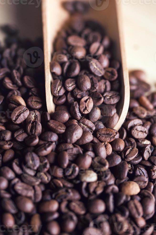 koffie beens foto