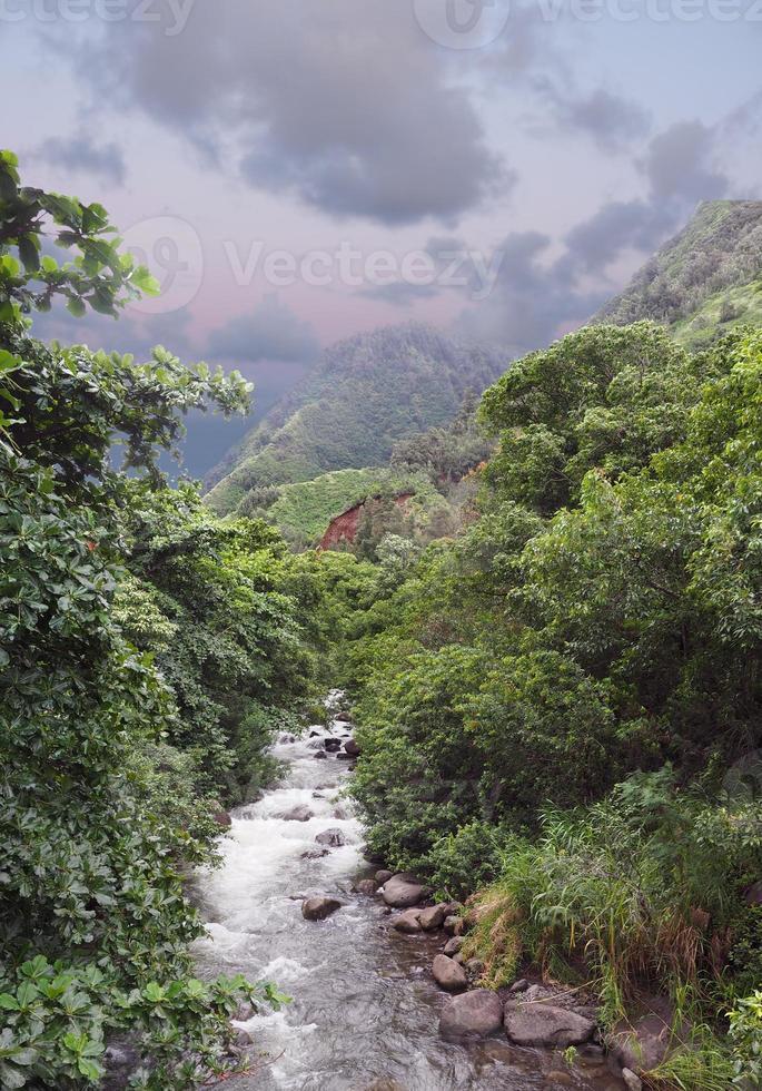rivier bergen en jungle Maui, Hawaii foto