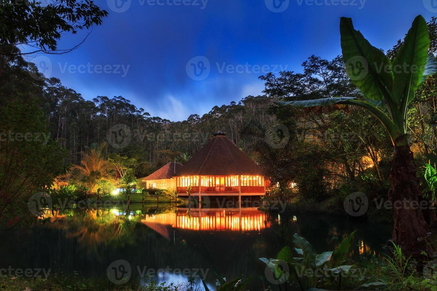 jungle lodge nacht foto