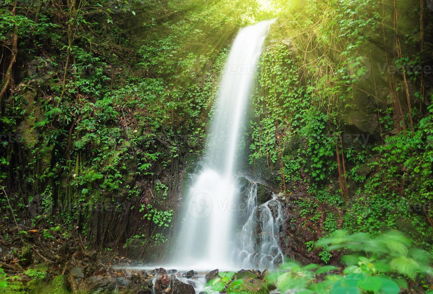 kleine waterval in de jungle foto