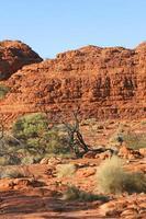 Kings Canyon National Park, Australië foto