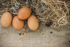 verse eieren van de boerderij. foto