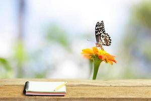 vlinder op zinnia bloem met notebook op houten tafel foto