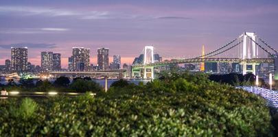 panoramische regenboogbrug en de skyline van tokyo van odaiba, nightview foto