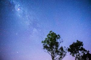 sterren boven Queensland foto