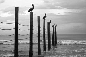 buitenste oevers kust bewolkt foto