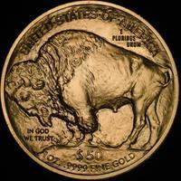 Amerikaanse buffel gouden munt (achterzijde) foto