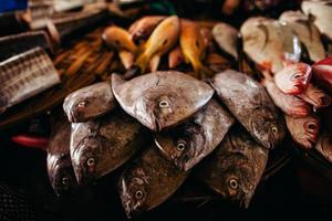 rauwe vis gesneden en gesneden op straatmarkt foto