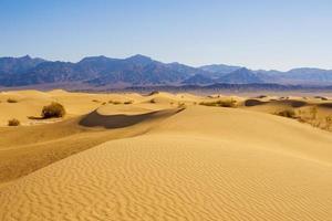 woestijn zandduinen foto