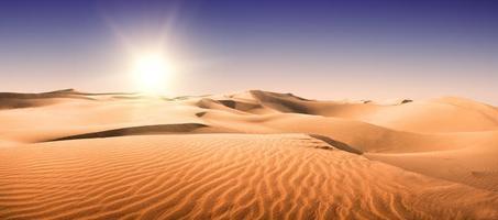 gouden woestijn. foto