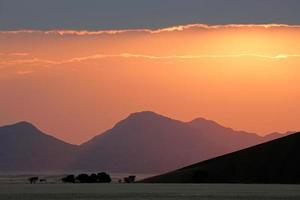 woestijn zonsopgang