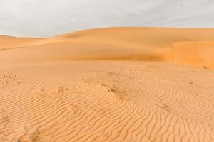 Sahara woestijn foto