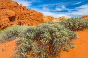 steenwoestijn foto