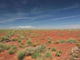 arizona woestijn foto