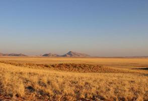 Namibische woestijn foto
