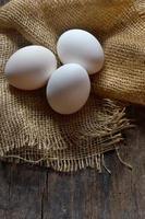 bio eieren foto