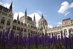 Boedapest, uitzicht op het parlement, Hongarije