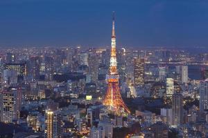 Tokyo, Japan stadsbeeld luchtfoto stadsgezicht uitzicht in de schemering.