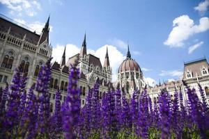 Boedapest, uitzicht op het parlement, Hongarije foto