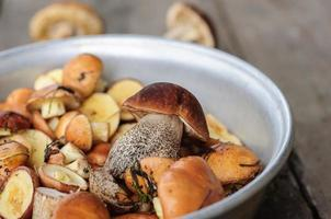 geplukte eetbare bospaddestoelen