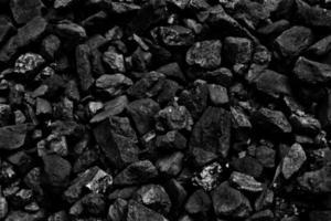 steenkool foto