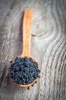 zwarte kaviaar foto