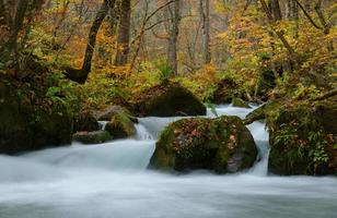 oirase kloof in de herfst, in aomori, japan foto