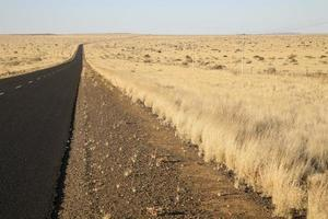 landbouw in Zuid-Afrika foto