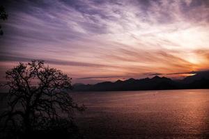 zonsondergang en droge boom. foto