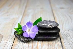 zwarte zen stenen met paarse bloem op oud geknoopt hout foto