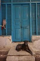 oude deuren india, varanasi foto