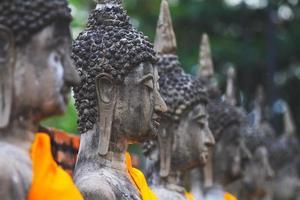 Boeddha zit